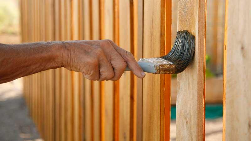 Best Wood Sealers for Cedar