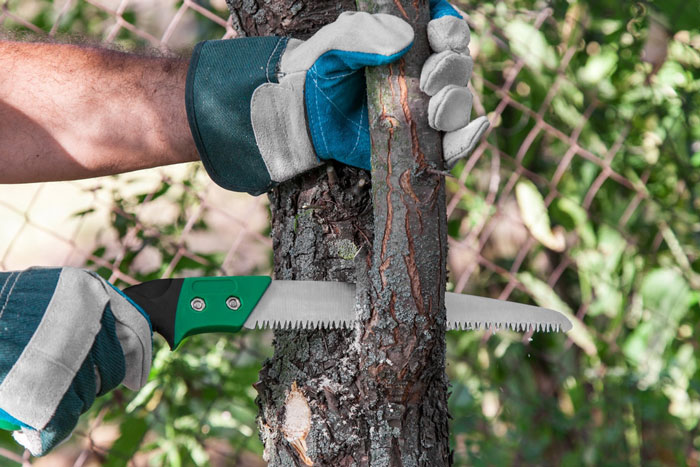 Uses of Pruning Saw